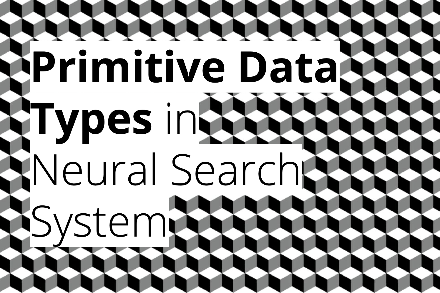 Primitive Data Types in Neural Search System